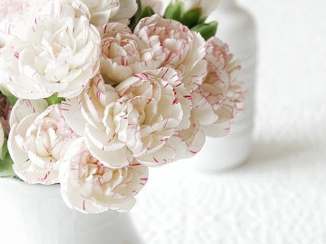 Auf der Mammilade|n-Seite des Lebens | Lifestyle Blog | Nelken | Spraynelken | Blumen