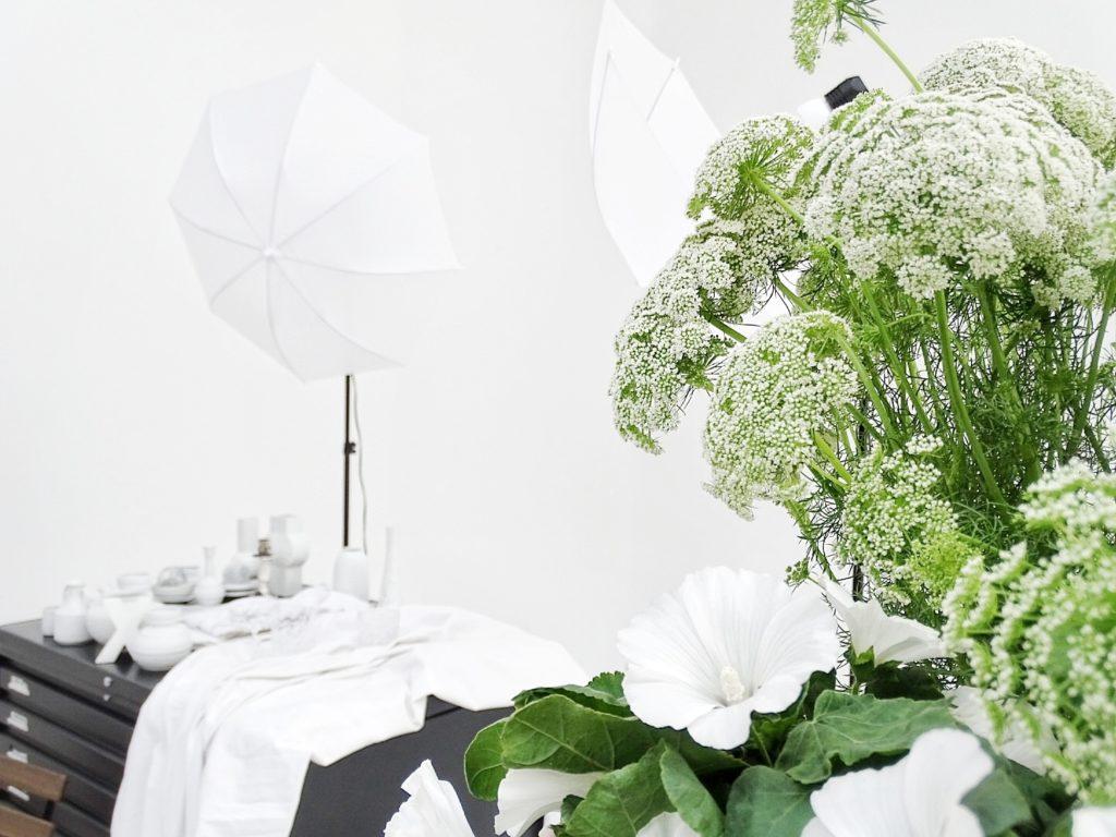 Auf der Mammilade|n-Seite des Lebens | Personal Lifestyle Blog | Kreativ mit Blumen und Pflanzen | Tipps für das Gestalten und Fotografieren von Stillleben | Fotostudio | Photo Props | Blumen