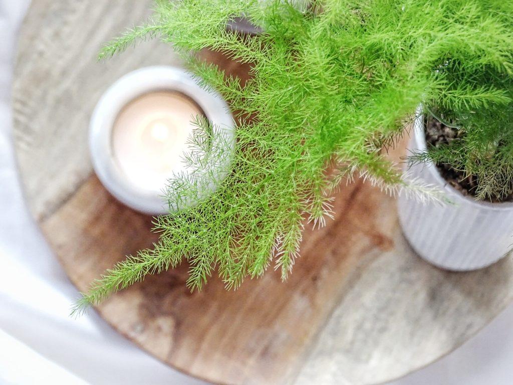 Auf der Mammilade|n-Seite des Lebens | Personal Lifestyle Blog | Wohnen mit Pflanzengrün, Holzakzenten und viel Weiß | Pflanzen | Holzteller | Kerzen