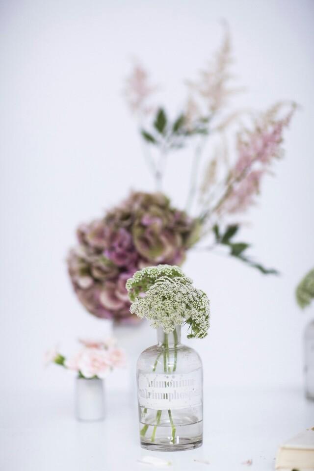 Auf der Mammilade|n-Seite des Lebens | Personal Lifestyle Blog | Kreativ mit Blumen und Pflanzen | Tipps für das Gestalten und Fotografieren von Stillleben | Blumen | Apothekergläser als Vasen | Photo Credit AnnyCK für sisterMAG