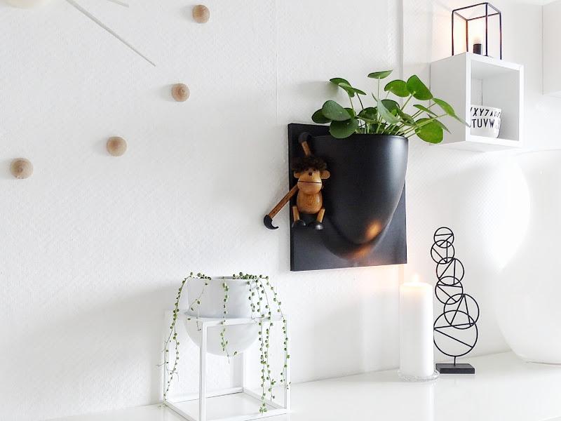 Auf der Mammilade|n-Seite des Lebens | Personal Lifestyle Blog | Pilea Peperomioides | Ufopflanze | Bauchnabelpflanze | Kanonierpflanze | Pflanzen Styling | Herbst Styling | Winter Styling | skandinavisches Wohnen | Küche | Vert Plant | String of Pearls