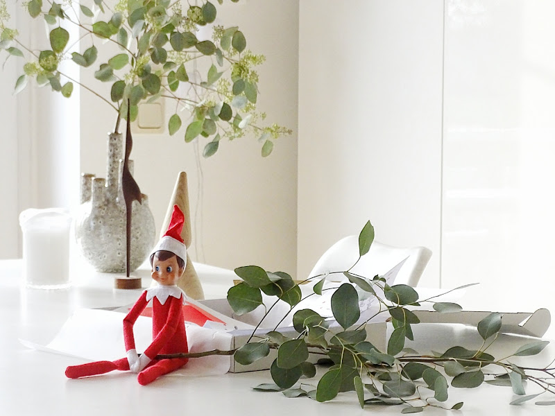 Auf der Mammilade|n-Seite des Lebens | Personal Lifestyle Blog | 5 Lieblinge und Inspirationen der Woche | Eukalyptus | Weihnachtself