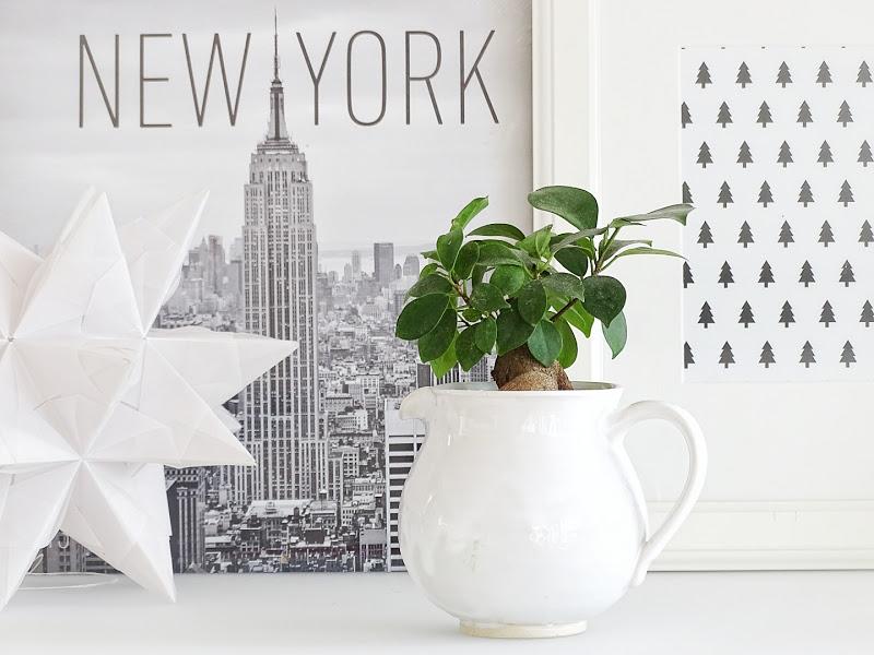 Auf der Mammiladen|n-Seite des Lebens | Personal Lifestyle Blog | Blumenübertöpfe selber aufhübschen mit Modeliermasse, durch Fingerstricken und mit Korkpapier | DIY Geschenkideen | alternative Gefäße als Übertöpfe für Zimmerpflanzen