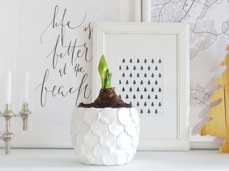 Auf der Mammiladen|n-Seite des Lebens | Personal Lifestyle Blog | Blumenübertöpfe selber aufhübschen mit Modeliermasse, durch Fingerstricken und mit Korkpapier | DIY Geschenkideen | Amaryllis
