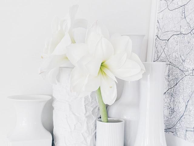 Auf der Mammiladen-Seite des Lebens | Personal Lifestyle Blog | Lieblinge und Inspirationen der Woche | weiße Amaryllis-Blüte in weißer Vase