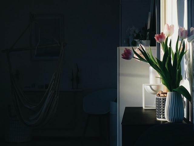 Auf der Mammiladen-Seite des Lebens | Personal Lifestyle Blog | Lieblinge und Inspirationen der Woche | Tulpen im Sonnenlicht