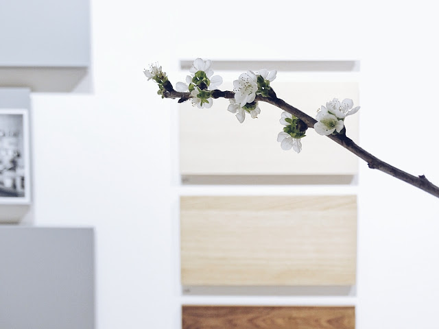 Auf der Mammiladen-Seite des Lebens | Personal Lifestyle Blog | Impressionen und Trends von der Internationalen Möbelmesse IMM 2017 in Köln | Messetouren mit SoLebIch und Blogst Lounge | String Furniture | Holzfarben