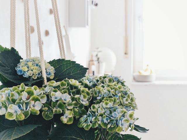 Auf der Mammiladen-Seite des Lebens | Personal Lifestyle Blog | 5 Lieblinge der Woche | Minimalistisches Wohnen mit viel Weiß | Magical Hortensien in der Küche