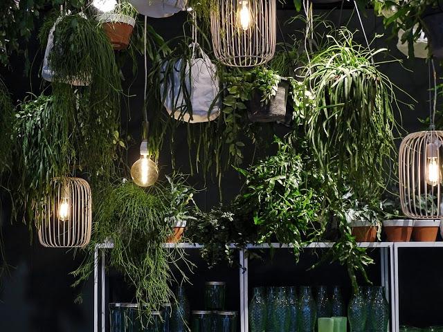 Auf der Mammiladen-Seite des Lebens | Personal Lifestyle Blog | Impressionen und Trends von der Internationalen Möbelmesse IMM 2017 in Köln | Messetouren mit SoLebIch und Blogst Lounge | Serax | Urban Jungles