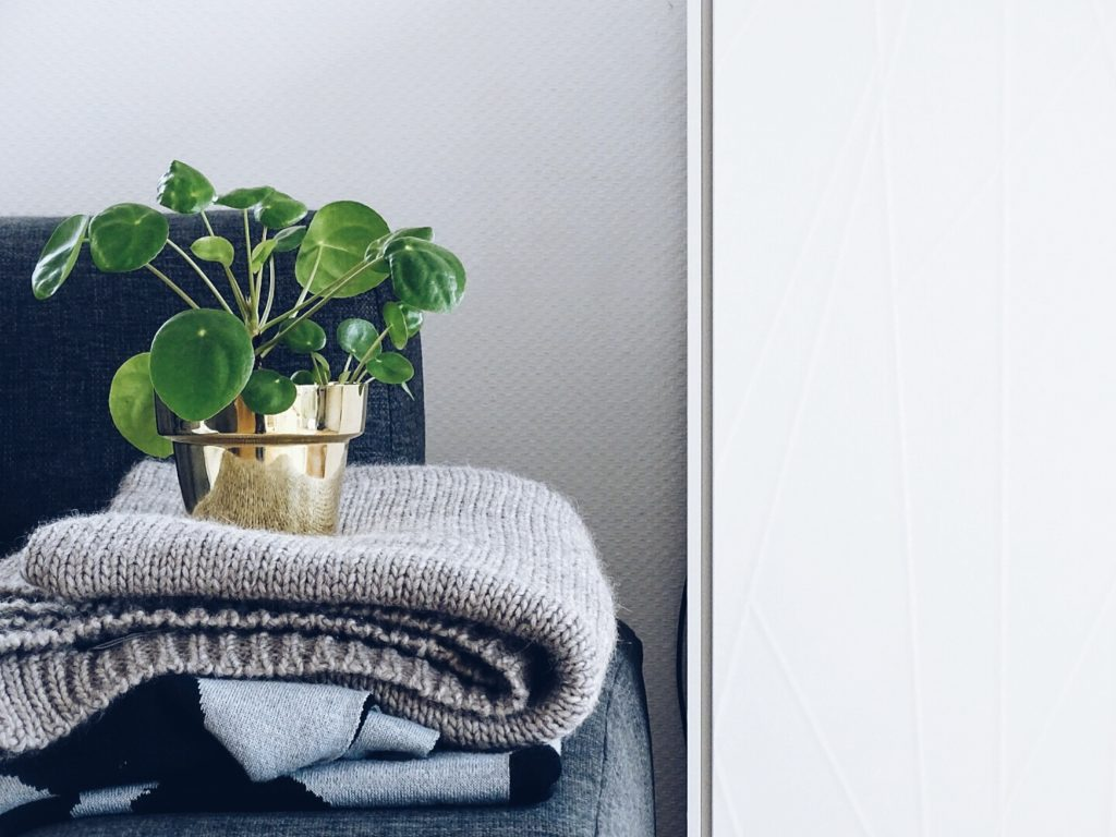 Auf der Mammiladen-Seite des Lebens | A Personal Lifestyle Blog | Pilea Peperomioides | Messing Blumenübertopf