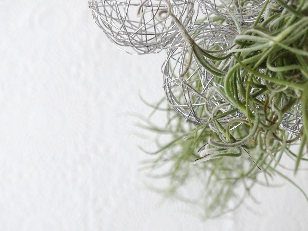 Auf der Mammilade-n-Seite des Lebens | Personal Lifestyle Blog | Haengende DIY-Gaerten mit Louisianamoos, Drahtkugeln und Holzringen | Schwebende Ostereier im DIY-Drahtkugel-Lichterketten-Nest