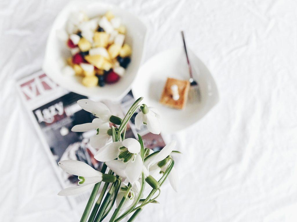 Auf der Mammilade|n-Seite des Lebens | Personal Lifestyle Blog | Lieblinge und Weiß|s|heiten der Woche | Fruehlingsdekoration | Schneegloeckchen