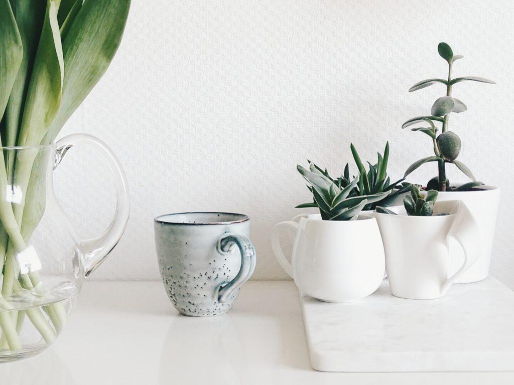 Auf der Mammilade|n-Seite des Lebens | Personal Lifestyle Blog | Lieblinge und Inspirationen der Woche #16 | Fruehlingsdeko | Urban Jungle Blogger | Pflanzen in der Tasse