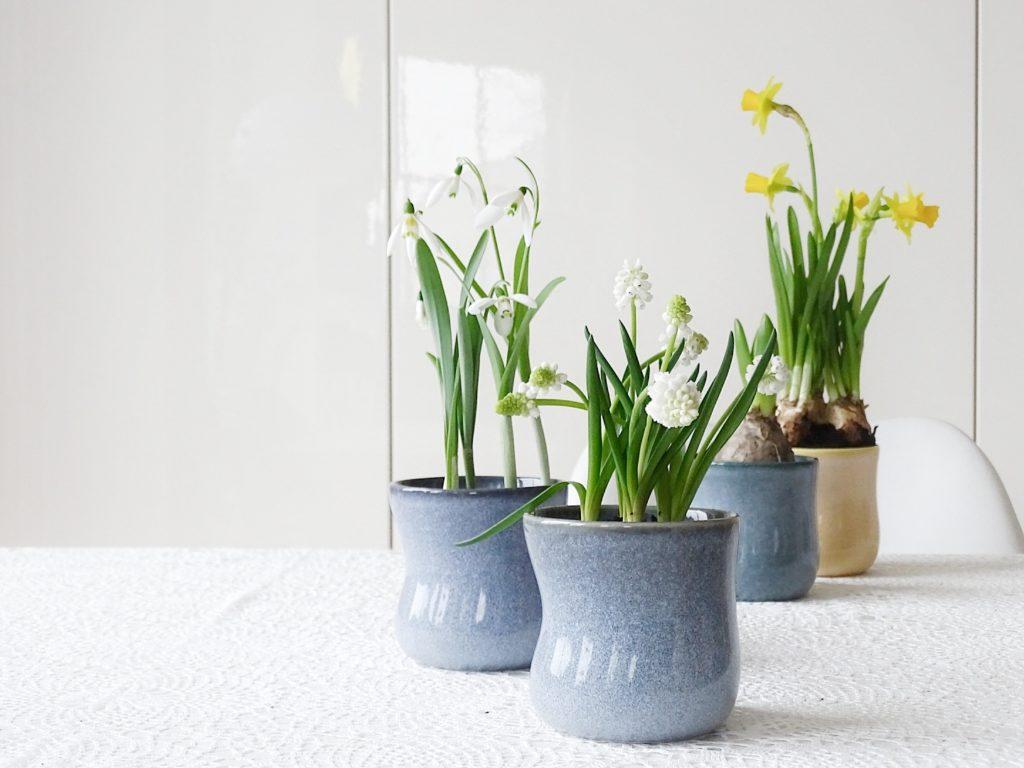 Auf der Mammilade|n-Seite des Lebens | Personal Lifestyle Blog | 1 Tag in 12 Bildern | Fotoaktion 12 von 12 | Frühlings-DIY-Deko mit Frühblühern in bunten Keramik-Tassen