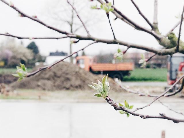Bautagebuch Teil 3 | Bau eines freistehenden Einfamilienhauses | Über den Rohbau bis zum Richtfest | www.mammilade.blogspot.de | Guss Bodenplatte