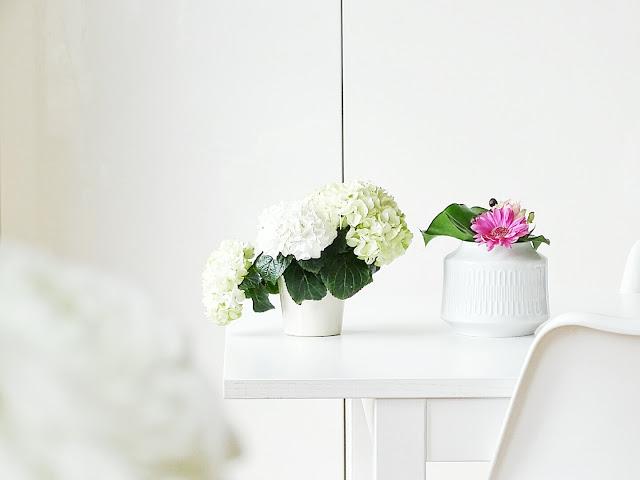 Weiße Hortensien | Über das Bloggen ohne Nische plus Monatsblick April und Mail | Personal Lifestyle, DIY and Interior Blog | Auf der Mammiladen-Seite des Lebens