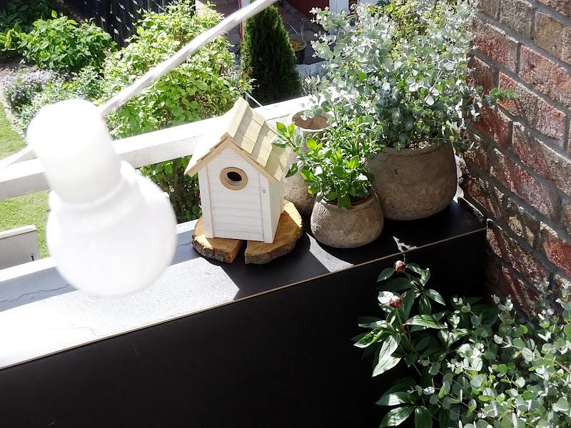 Balkon-Gestaltung mit Eukalyptus -  www.mammilade.blogspot.de - Fotoaktion 12von12 - 1 Tag in 12 Bildern