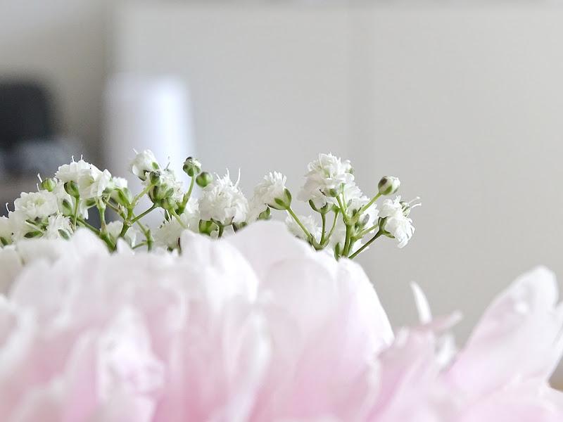Schleierkraut-Blumendeko -  www.mammilade.blogspot.de - Fotoaktion 12von12 - 1 Tag in 12 Bildern