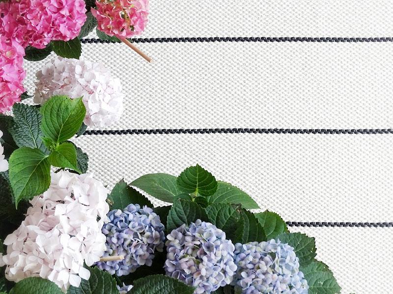 Hortensien pink, weiß, lila -  www.mammilade.blogspot.de - Fotoaktion 12von12 - 1 Tag in 12 Bildern