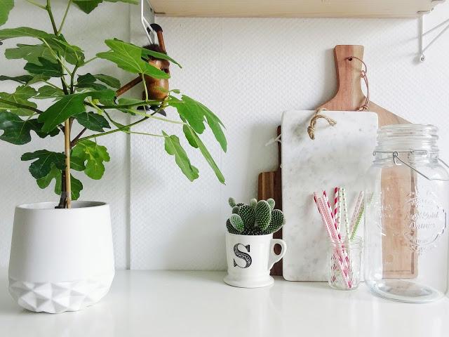 Küchen-Deko-Idee mit Pflanzen - https://mammilade.blogspot.de - 5 Lieblinge der Woche
