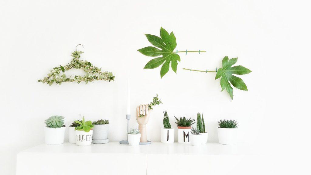 Pflanzen-Deko für die Wand - 6 Nachmach-, DIY-Ideen und Rezepte für den September - www.mammilade.blogspot.de