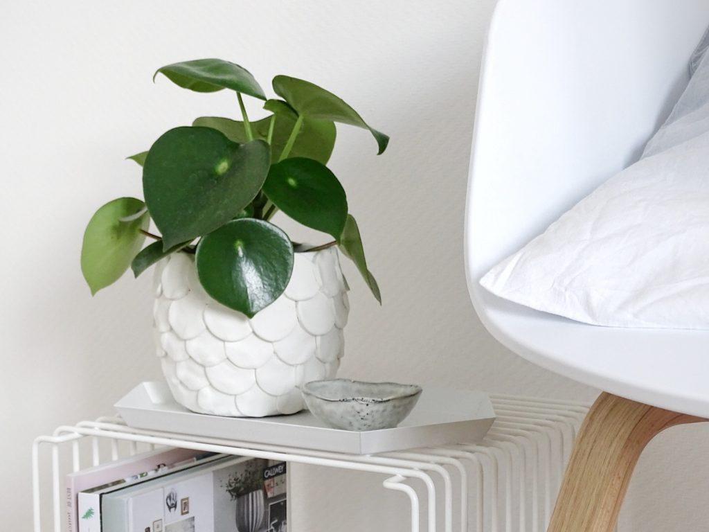 DIY - Blumentöpfe aufhübschen - 4 wirkungsvolle Wege für ein Raum-Makeover und frischen Wind zu Hause - www.mammilade.blogspot.de