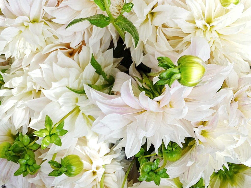 Deko-Idee mit Dahlien - Styling-Tipps für Frischblumen in Vasen - 6 Nachmach-, DIY-Ideen und Rezepte für den September - www.mammilade.blogspot.de