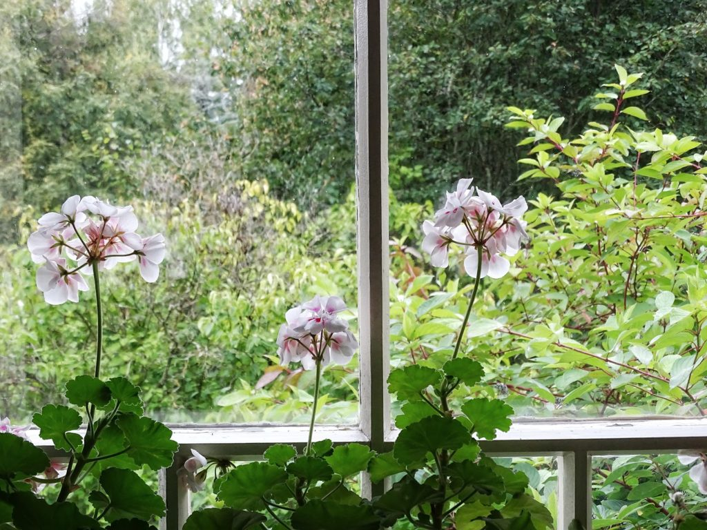 Reisetipps für 4 Tage in Finnland - Frantsila Well Beeing Centre - https://mammilade.blogspot.de