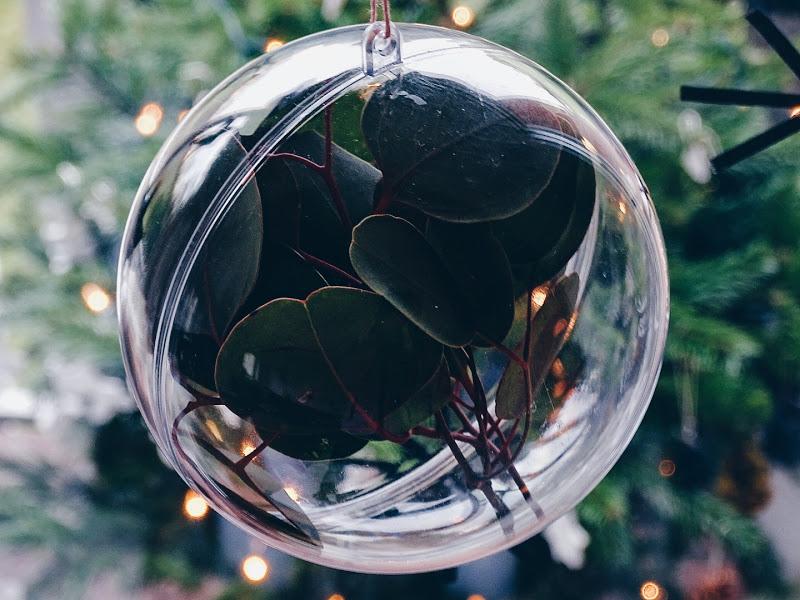 Eukalyptus in Plexiglas-Kugel - 14 DIY-Nachmach-Ideen, Deko-Inspirationen und Rezepte für den Dezember und Weihnachten - https://mammilade.blogspot.de