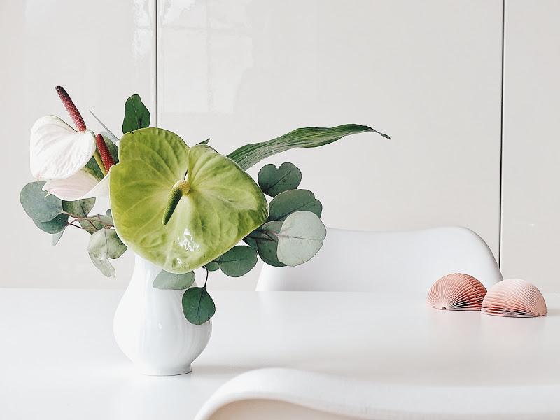 Anthurien und Eukalyptus - 14 DIY-Nachmach-Ideen, Deko-Inspirationen und Rezepte für den Dezember und Weihnachten - https://mammilade.blogspot.de