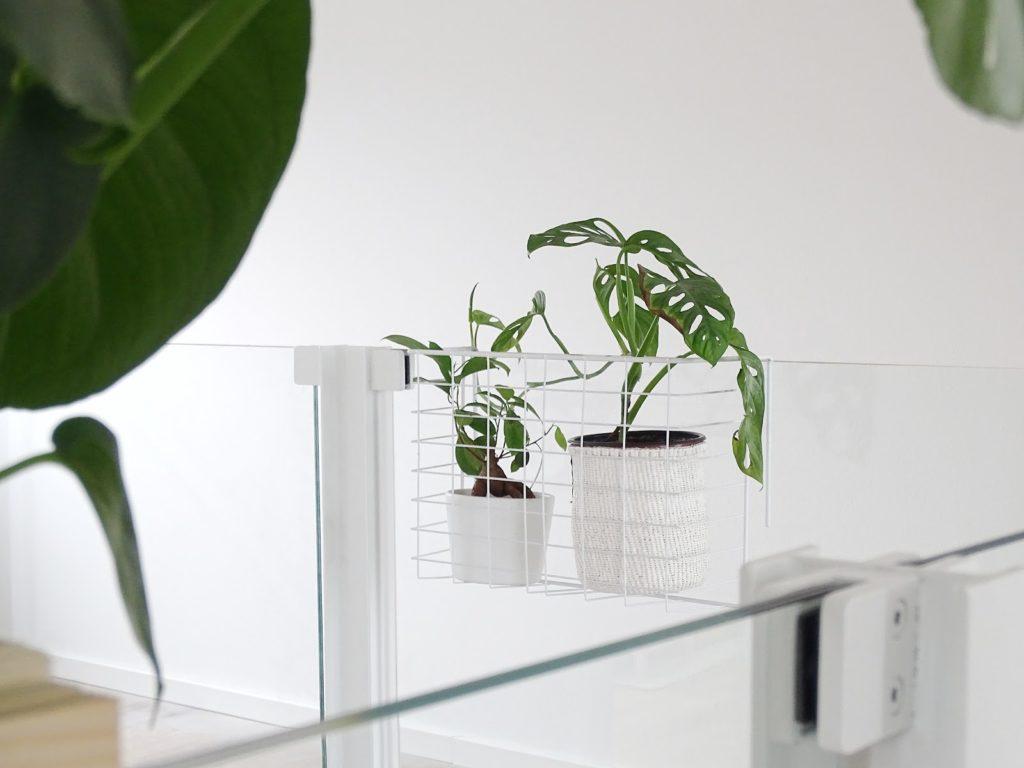 Drahtkorb-Einschubfach für Wäsche als hängenden Indoor-Blumenkasten am Treppengeländer zweitverwenden | Fotoaktion #12von12 und 1 Tag in 12 Bildern | https://mammilade.blogspot.de