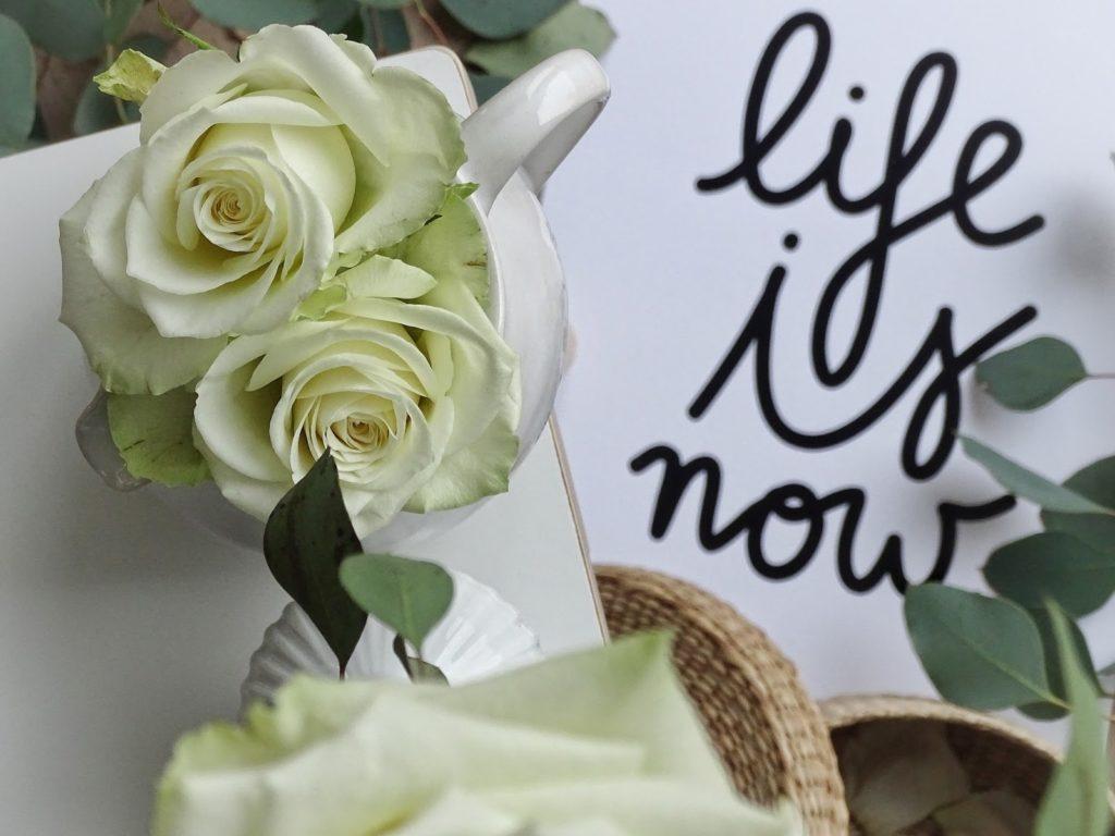 Stillleben mit weißen Rosen - Wochenlieblinge - https://mammilade.blogspot.de