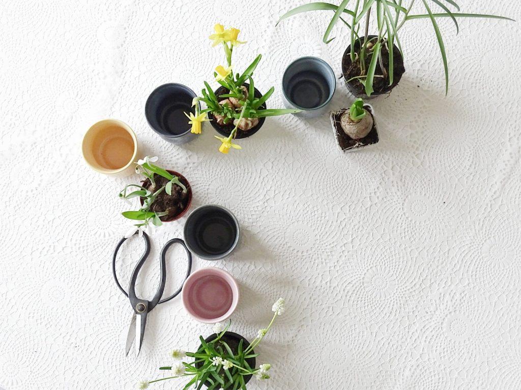 Frühblüher-Deko in farbigen Keramik-Bechern | 20 DIY-Nachmach-Ideen und Rezepte für den März, den Frühling und Ostern | https://mammilade.blogspot.de