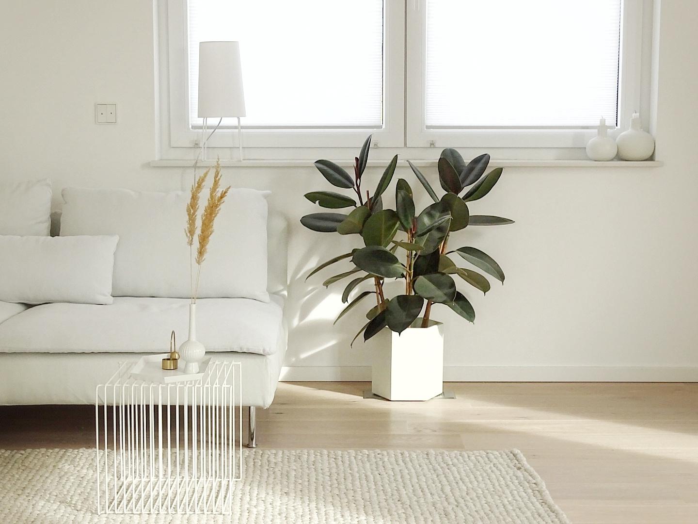 1 Tag in 12 Bildern | Wohnzimmerdeko mit Gummibaum | mammilade.com