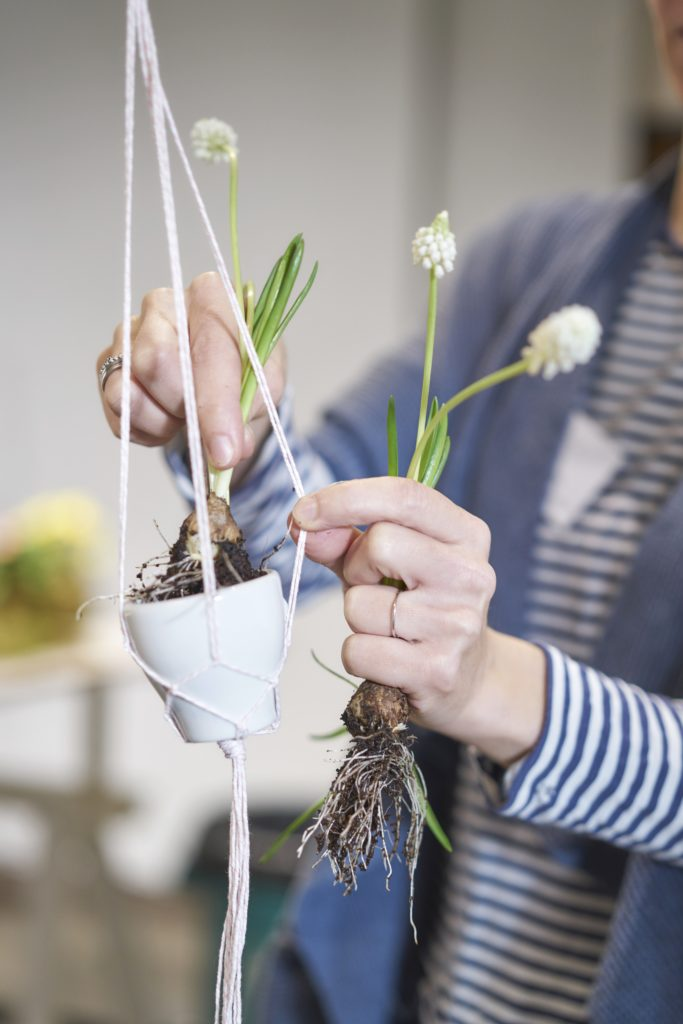 Bepflanzte Eierschalen & Espressotassen in Makramée zu Ostern | mammilade.com